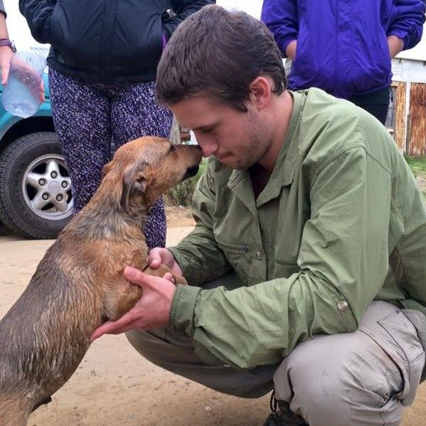 Small animal veterinary work in South Africa