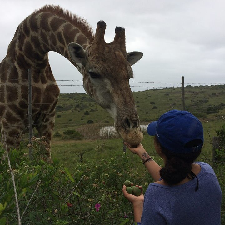Exotic veterinary work in South Africa