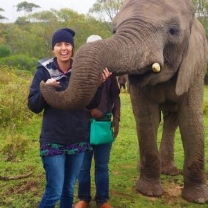 Volunteer vet students learn about elephants at Inkwenwezi game reserve for international veterinary experience