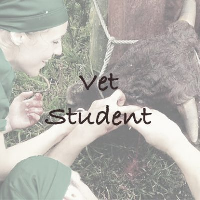 Vet Student in South Africa