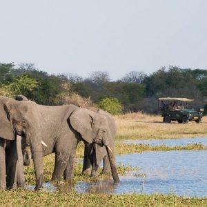 Community Clinic & Safari in Malawi
