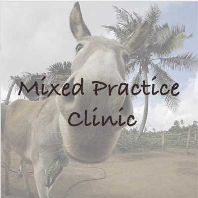 Mixed Practice Clinic in Tanzania